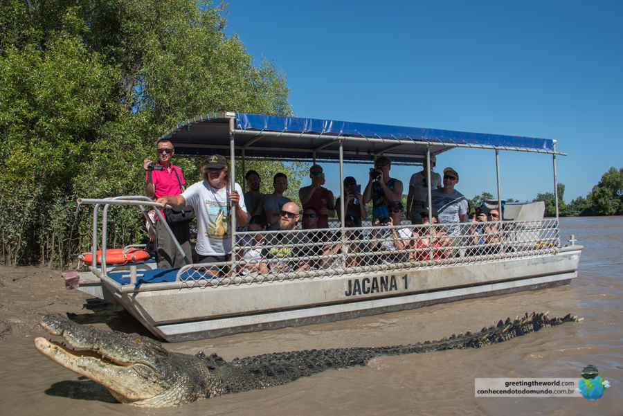 Crocodile River Cruise